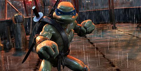 turtle rape porn