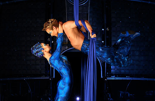 brisbane suspension dancers lovers