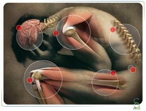 analgesics medication car accidents long acute pain chronic