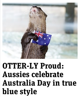 australian otters news.com.au