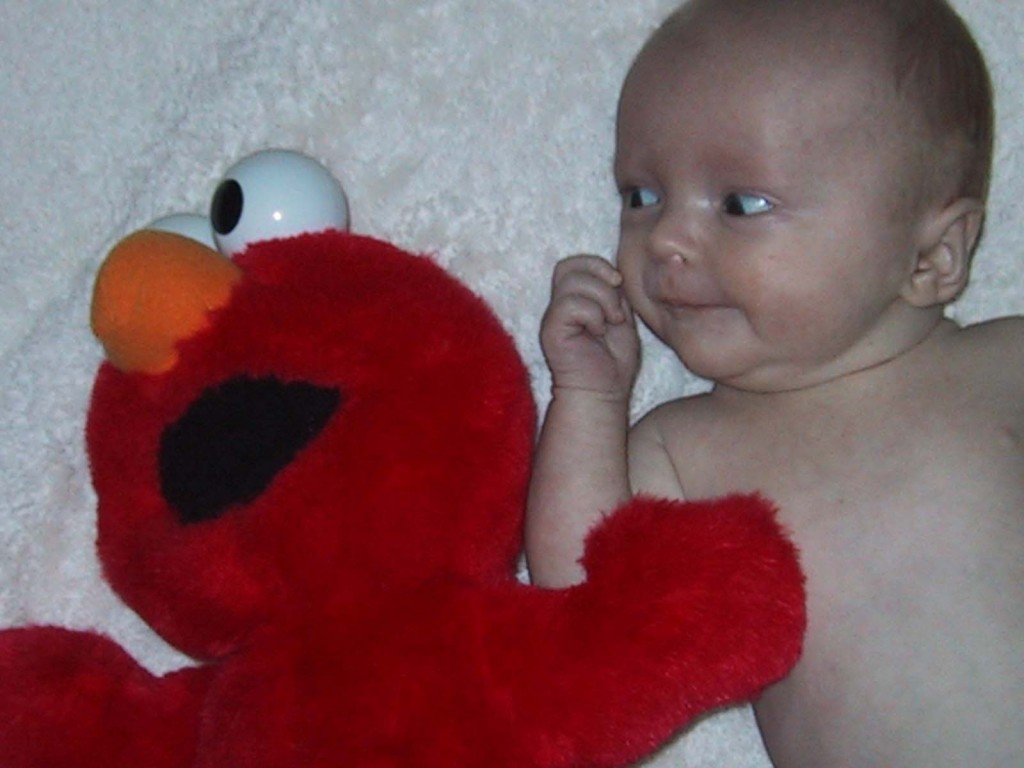 size comparison with a tickle me elmo