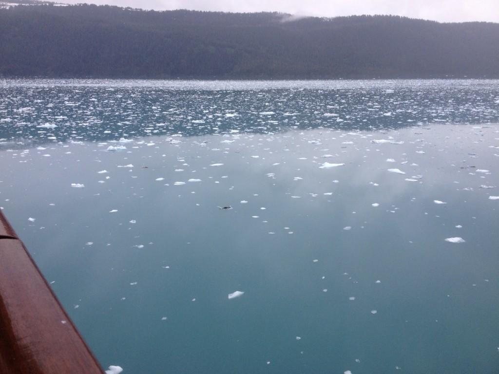 floating ice 1