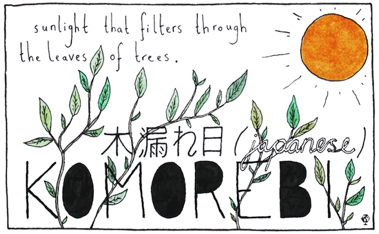 untranslatable words komorebi