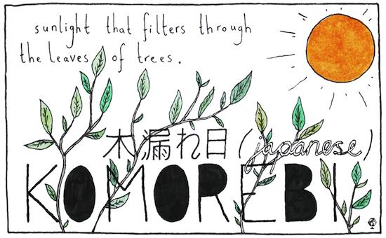 untranslatable words komorebi