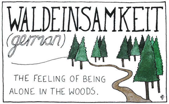 untranslatable words waldeinsamkeit