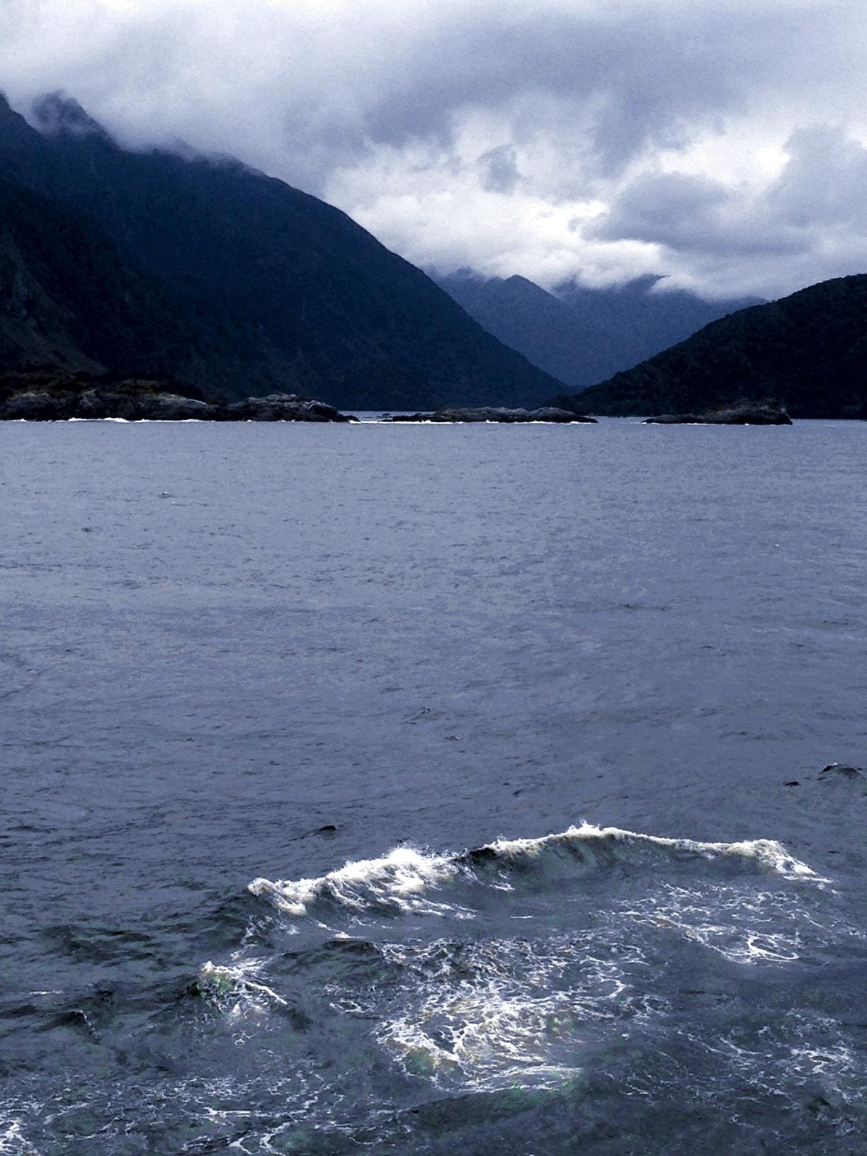 Sea Princess Fjordland cruising