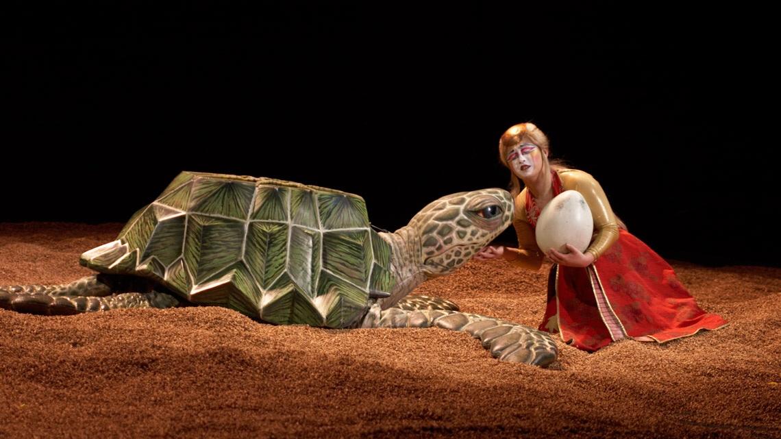 cirque ka turtle