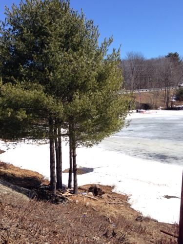 maine-frozen-ponds.jpg