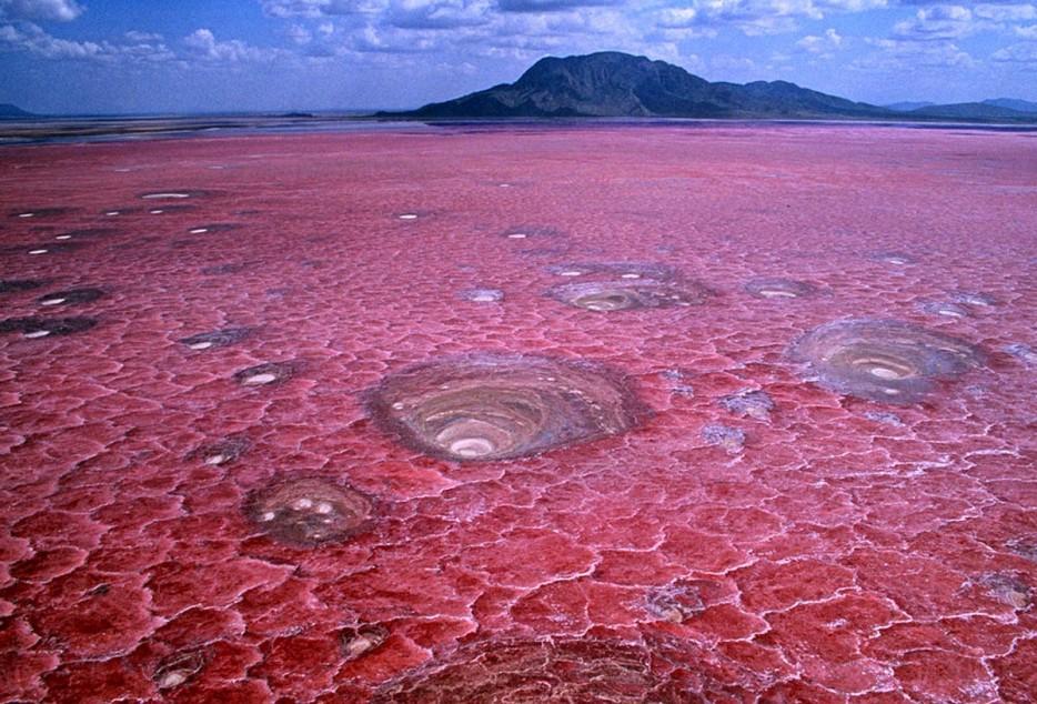 calcifying lakes