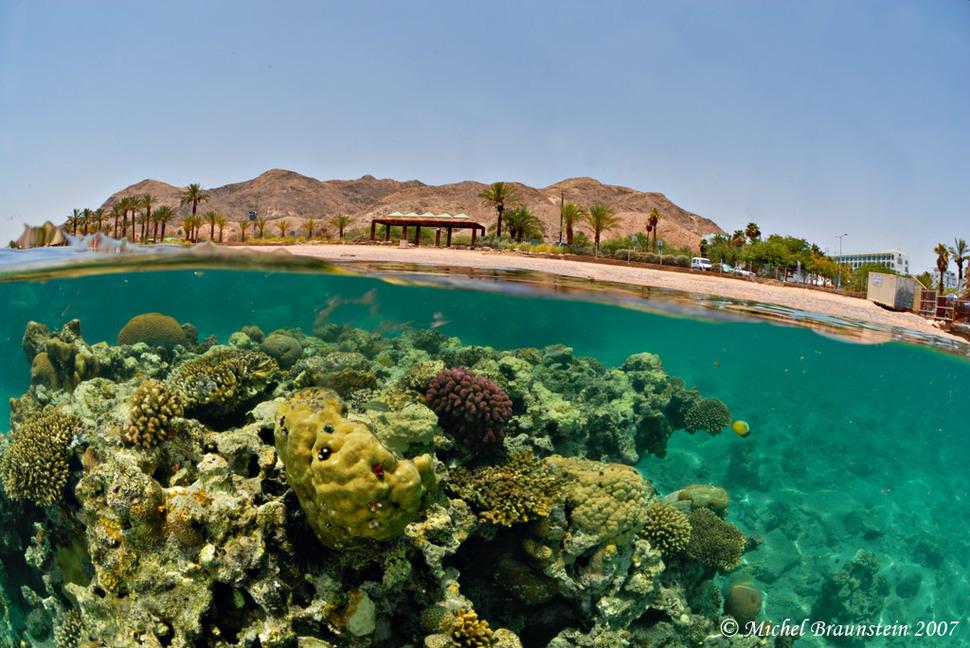 Underwater Eilat Israel
