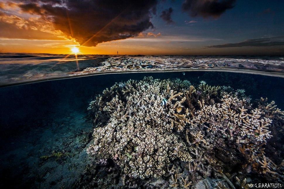 Underwater Mystery2