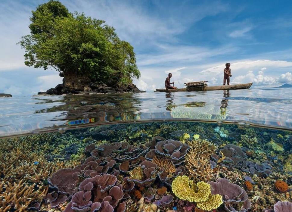Underwater Papua New Guinea