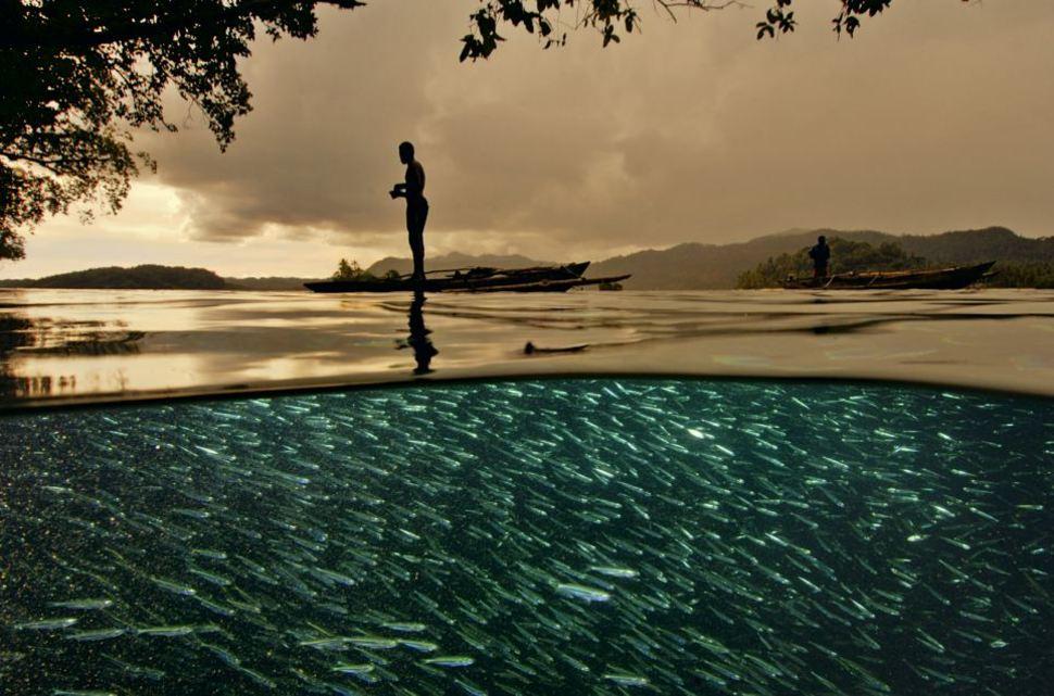 Underwater Raja Ampat Indonesia