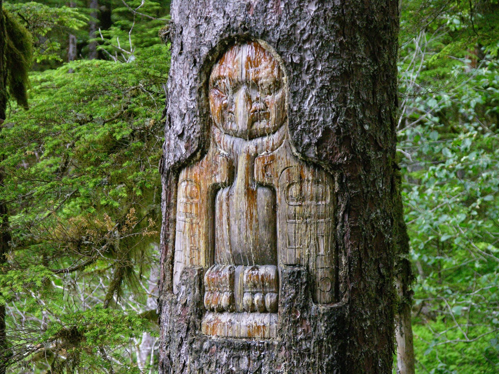 Tinglit tree carving in Bartlett Cove.
