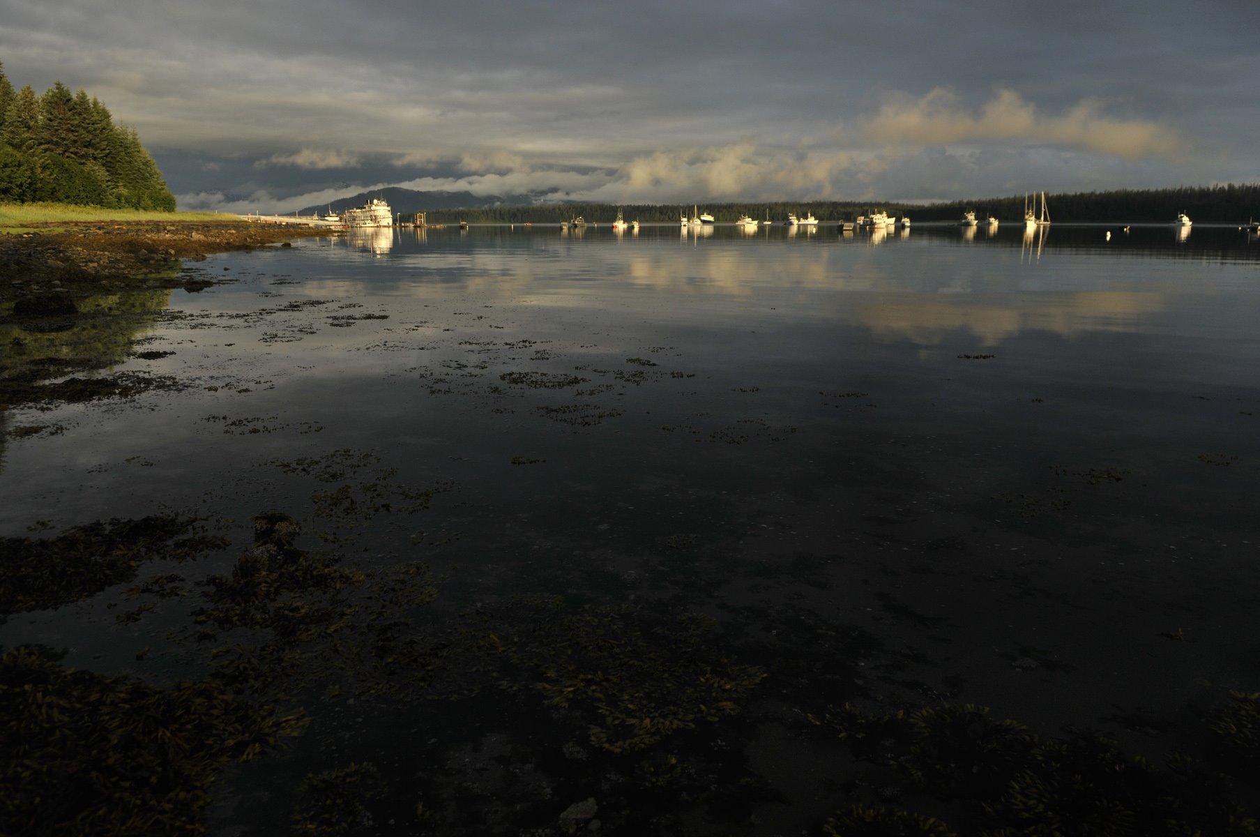 "Glacier bay receives approx 80"" of rain a year... a brief reprieve."