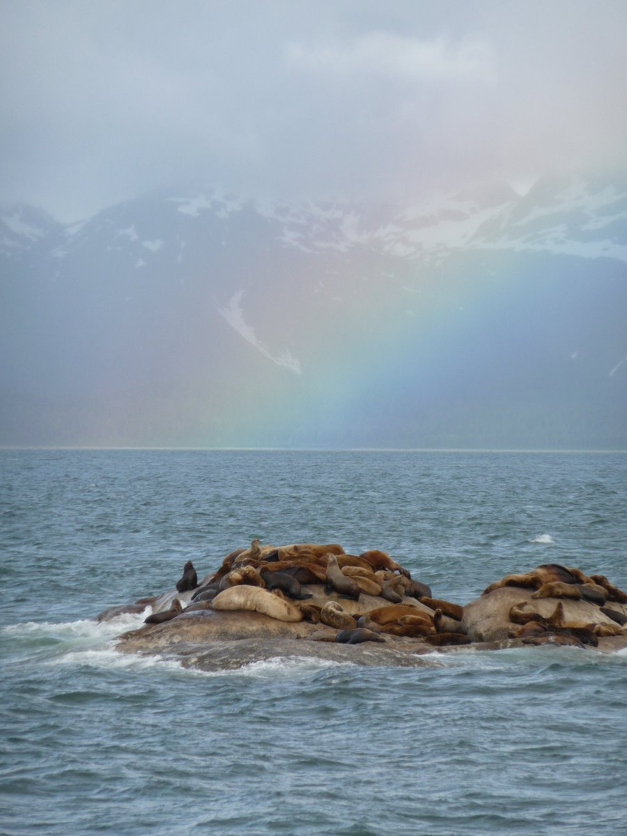 South Marble Island and Steller sea lions.