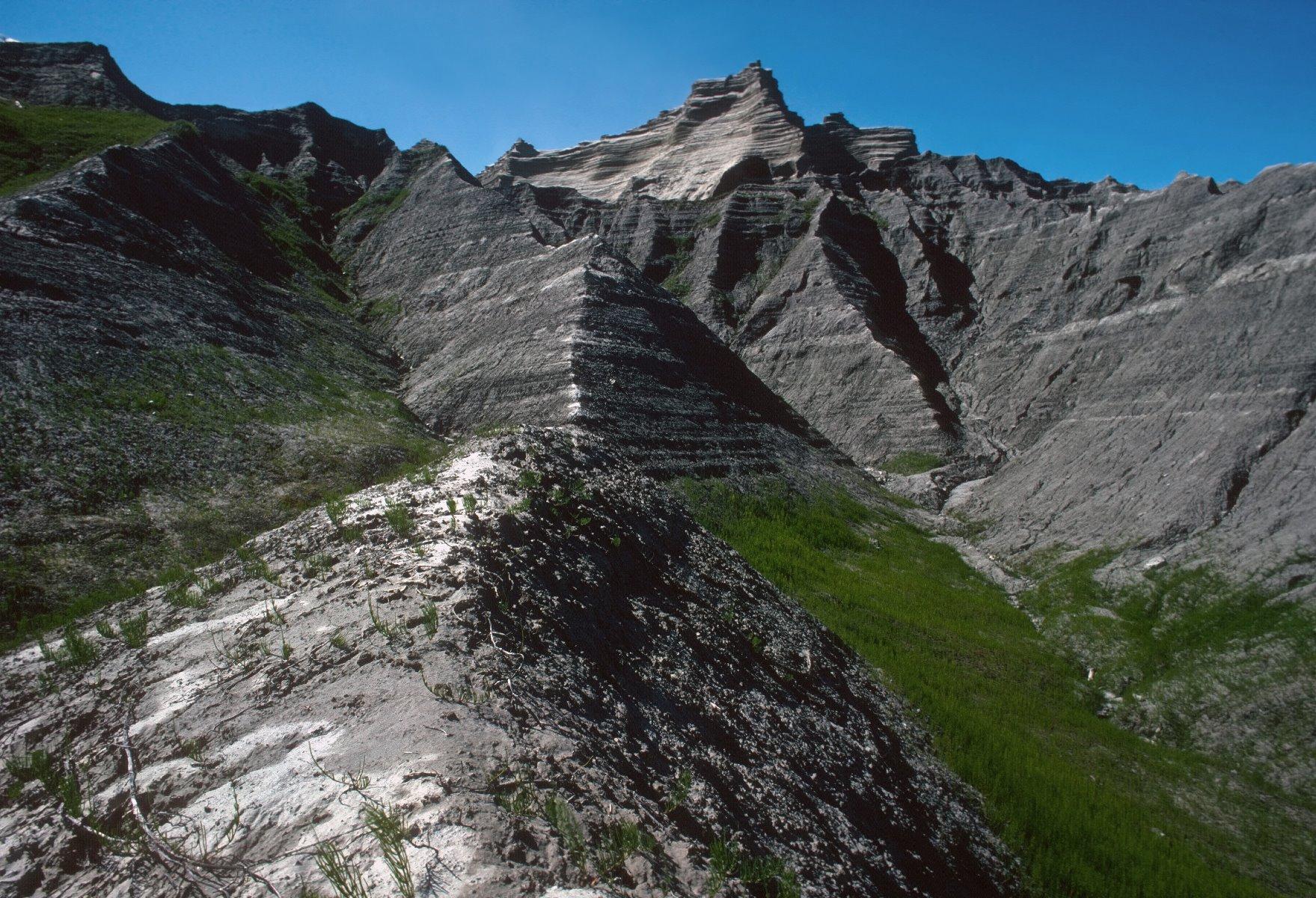 East Arm of Glacier Bay, Adams Inlet area.