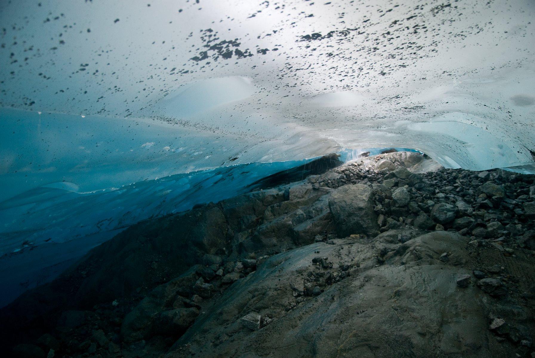 Ice cave at Reid Glacier.
