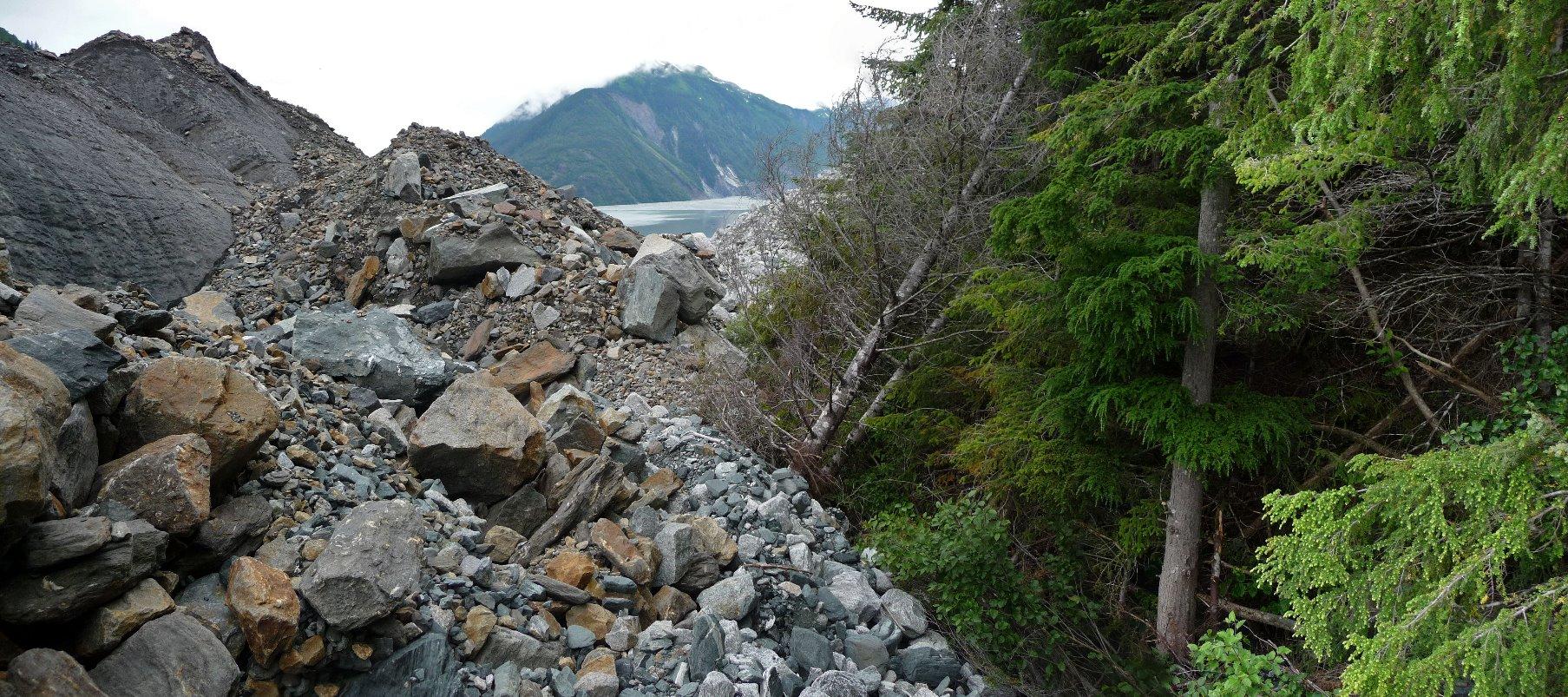 Glacier vs Forest - North Crillion Glacier prevails.