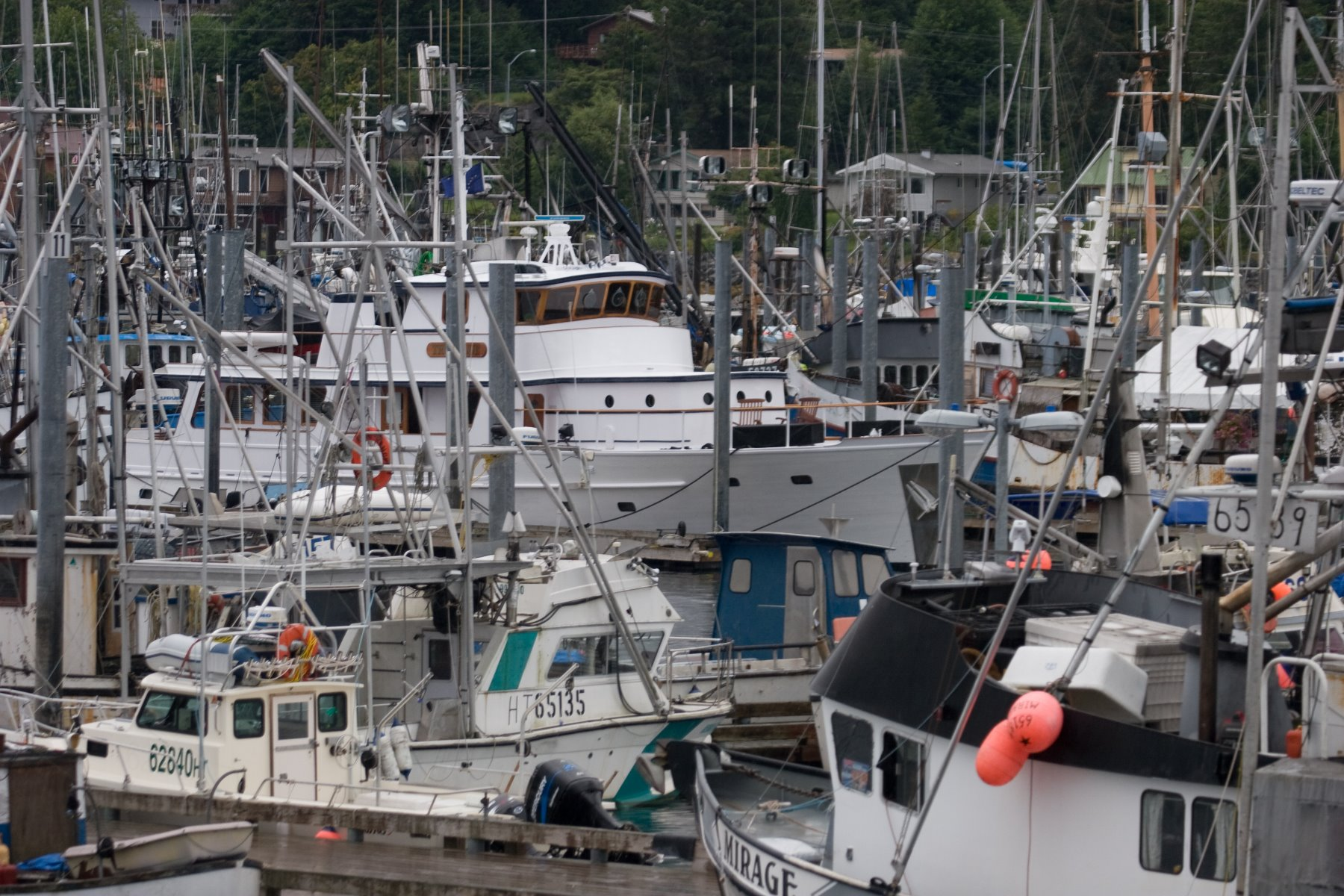 Sitka is a very busy fishing harbour.