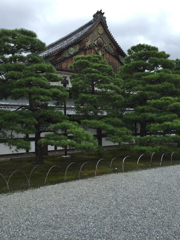 nijojo-castle-gardens-3.jpg